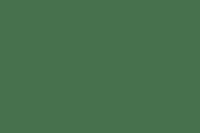 HYDRANGEAS   |   ARTWORKS